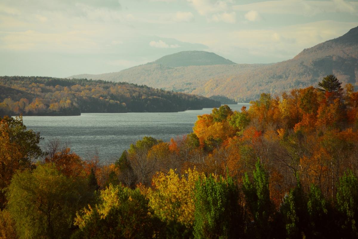 landscape-nature-forest-lake.jpg