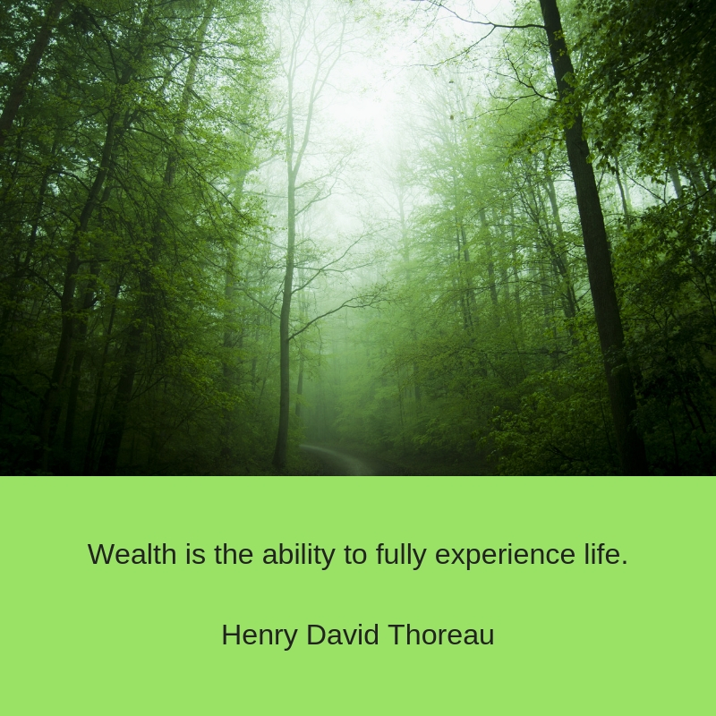 Wealth is the ability to fully experience life.Henry David Thoreau.jpg