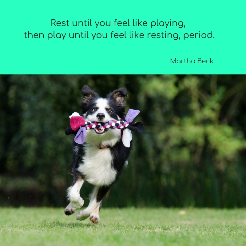 Rest until you feel like playing, then play until you feel like resting, period.t.jpg
